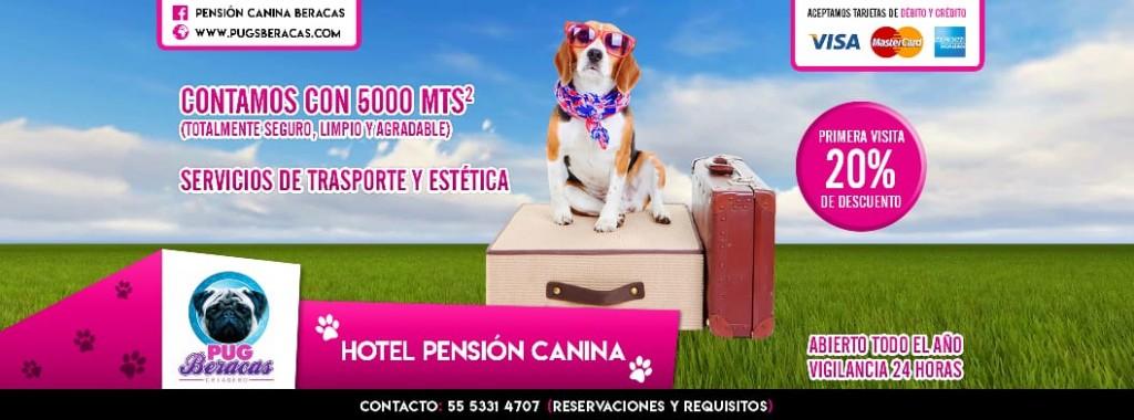 portada pension